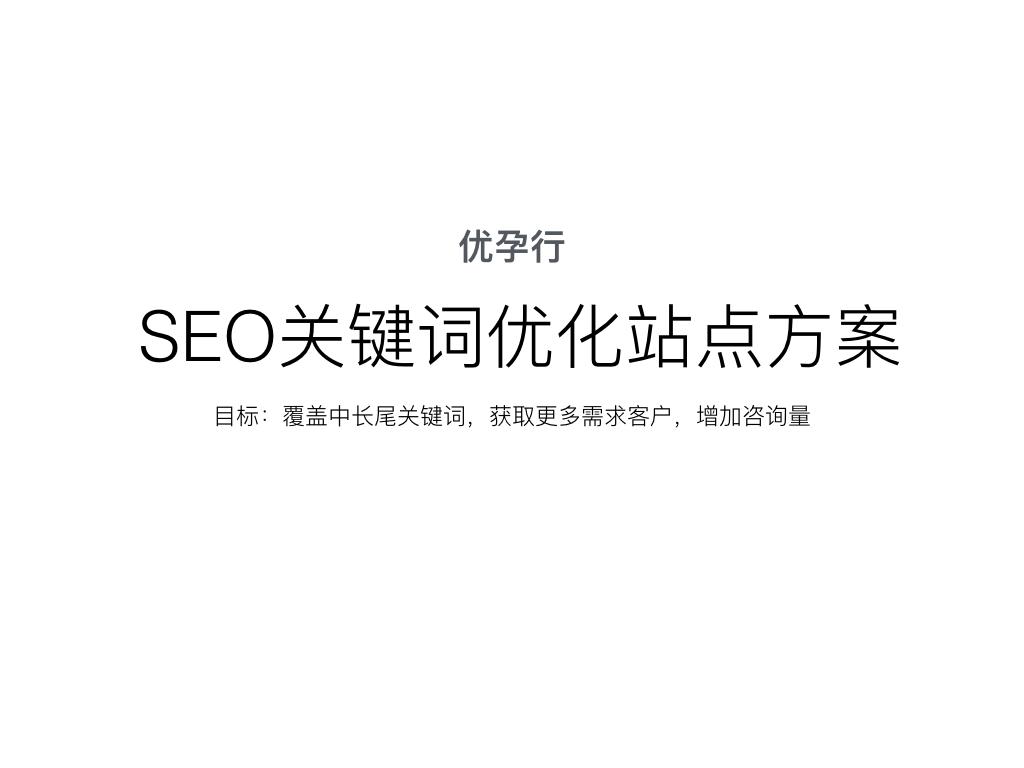 SEO关键词优化站点方案杭州SEO顾问